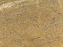 Widok z lotu ptaka aridity pustyni menchii piasek nabijający ćwiekami z odciskami stopymi i opona śladami obrazy royalty free