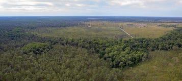 Widok z lotu ptaka byk zatoczki przyrody zarządzania teren Zdjęcie Royalty Free