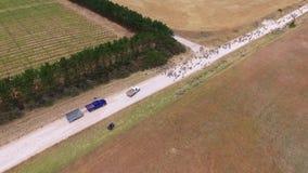 Widok z lotu ptaka cakle na odludzie drodze zdjęcie wideo