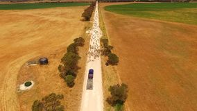 Widok z lotu ptaka cakle na odludzie drodze zbiory wideo