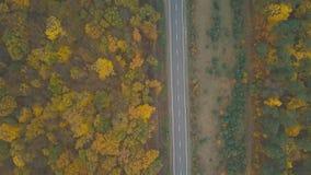 Widok z lotu ptaka ciężarówka i inny kupczymy jeżdżenie wzdłuż drogi otaczającej jesień lasem zbiory wideo