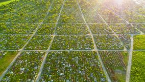Widok z lotu ptaka detailazed cmentarz na pięknym słonecznym dniu 4K zbiory