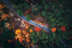 Widok z lotu ptaka droga w pięknym jesień lesie fotografia royalty free