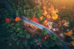 Widok z lotu ptaka droga w pięknym jesień lesie przy zmierzchem zdjęcie stock