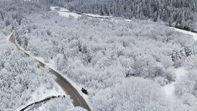Widok z lotu ptaka droga w zima lesie na chmurnym dniu Piękna zimy droga wśród natury świerczyna wewnątrz i sosna zbiory wideo