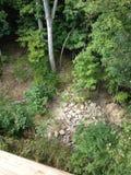 Widok z lotu ptaka drzewa Fotografia Stock