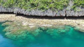 Widok Z Lotu Ptaka Fringing rafę koralowa i wyspę w Raja Ampat zbiory
