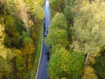 Widok z lotu ptaka gęsty las w jesieni obrazy royalty free