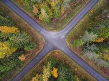 Widok z lotu ptaka gęsty las w jesieni z drogowym rozcięciem zdjęcia royalty free