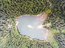 Widok z lotu ptaka Jeziorny Synevir w Karpackich górach w Ukraina Fotografia Royalty Free