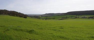 Widok z lotu ptaka kampania krajobraz w Francuskiej wsi, Gironde zdjęcia royalty free