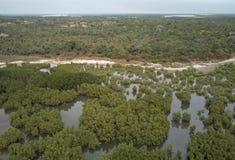 Widok z lotu ptaka Kassagne, Gambia obrazy royalty free