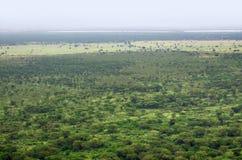 Widok z lotu ptaka Królowej Elizabeth Park Narodowy Obrazy Royalty Free