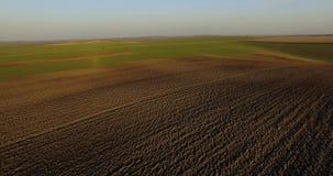 Widok z lotu ptaka kultywujący pola wśród zadziwiającego krajobrazu 4K zdjęcie wideo