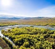 Widok z lotu ptaka las w dalekim wschodzie, Rosja obrazy stock
