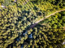 Widok z lotu ptaka las w Hiszpania Obraz Royalty Free