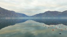 widok z lotu ptaka Latać nad zatoką Kotor zbiory wideo
