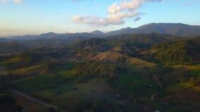 Widok Z Lotu Ptaka, Latający nad drzewami z i górami pięknymi chmurami i niebem w wschodzie słońca zdjęcie wideo