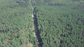 Widok z lotu ptaka miasteczko blisko lasowej klamerki Widok z lotu ptaka miasteczko w obszarze zalesionym Lasowa droga prowadzi Zdjęcie Royalty Free