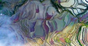 Widok z lotu ptaka na kolorowych ryżowych irlandczykach nad od chmur zdjęcie royalty free
