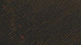 Widok z lotu ptaka nad rolniczymi polami i drogą strzał Abstrakcjonistyczny widok z lotu ptaka pionowo fotografujący pola, serpen zbiory