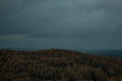 Widok z lotu ptaka nad zielonym lasem w wieczór Chmurna tajemnica Krajobrazy Latvia Zdjęcia Royalty Free