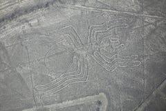 Widok z lotu ptaka Nazca Wykłada - pająka geoglyph, Peru Zdjęcie Stock