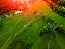 Widok z lotu ptaka obszar trawiasty, drzewa i krzaki z siecią sma, Fotografia Royalty Free