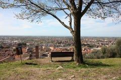 Widok z lotu ptaka od wzgórza zaciszności, zieleni, spokojnego i pokojowego jawny park, odludna ławka, drzewo i widok miasteczko, zdjęcia royalty free