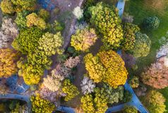 Widok z lotu ptaka park w jesieni zdjęcia stock