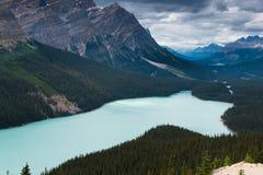 Widok z lotu ptaka Peyto jezioro, Banff park narodowy Fotografia Royalty Free