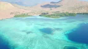 Widok z lotu ptaka piękna rafa i wyspa w Indonezja zdjęcie wideo