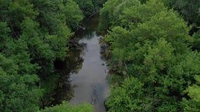 Widok z lotu ptaka piękny krajobraz - rzeka płynie wśród zielonego deciduous lasu Filmującego przy różnymi prędkościami - zbiory wideo