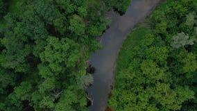 Widok z lotu ptaka piękny krajobraz - rzeka płynie wśród zielonego deciduous lasu zbiory