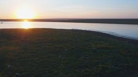 Widok z lotu ptaka piękny szmaragdowej zieleni wody jezioro i lato krajobrazowy zmierzch Zmierzch na jeziorze Obrazy Royalty Free