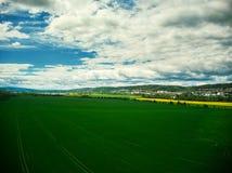 Widok z lotu ptaka plantaci pole zdjęcie royalty free