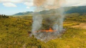 Widok z lotu ptaka pożar lasu Busuanga, Palawan, Filipiny zbiory