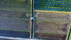 Widok z lotu ptaka pola tworzy tekstury zbiory