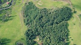 Widok z lotu ptaka pole golfowe zbiory wideo