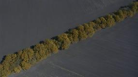 Widok z lotu ptaka pole od above w wiośnie Zdjęcie Stock