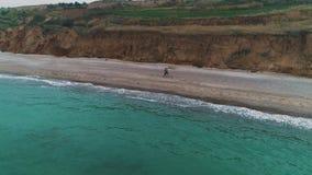 Widok z lotu ptaka potomstwo pary bieg na plaży zbiory