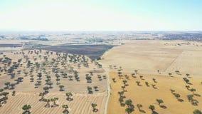 Widok z lotu ptaka rolniczy pola obok Hinojosa Del Duque zbiory wideo