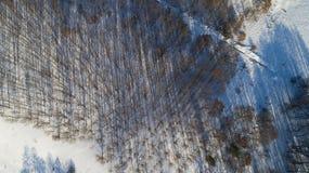 Widok z lotu ptaka rosyjski zima krajobraz z długich cieni Odgórnym widokiem Obrazy Royalty Free