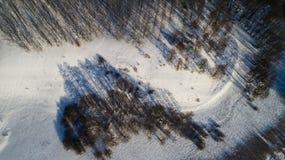 Widok z lotu ptaka rosyjski zima krajobraz z długich cieni Odgórnym widokiem Zdjęcia Royalty Free