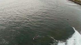 Widok z lotu ptaka rozszalały ocean z surfingowami Adrenalina pompuje wakacje Tenerife, Hiszpania, wyspy kanaryjskie zbiory wideo