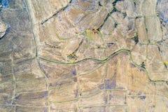 Widok z lotu ptaka ryż pola po żniwa zdjęcie stock