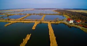 Widok z lotu ptaka rybiego gospodarstwa rolnego stawy Obrazy Royalty Free