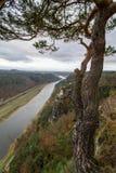 Widok z lotu ptaka rzeczny Elbe z drzewem jako przedpole zdjęcia stock