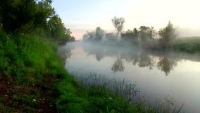 Widok z lotu ptaka rzeka przy wschodem słońca, komarnica nad ranek mgłą na rzece zdjęcie wideo