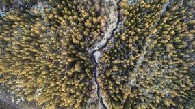 Widok z lotu ptaka rzeka w lesie z ?niegiem wzd?u? bank?w obrazy royalty free